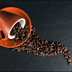 Caffeine & Performance Optimization